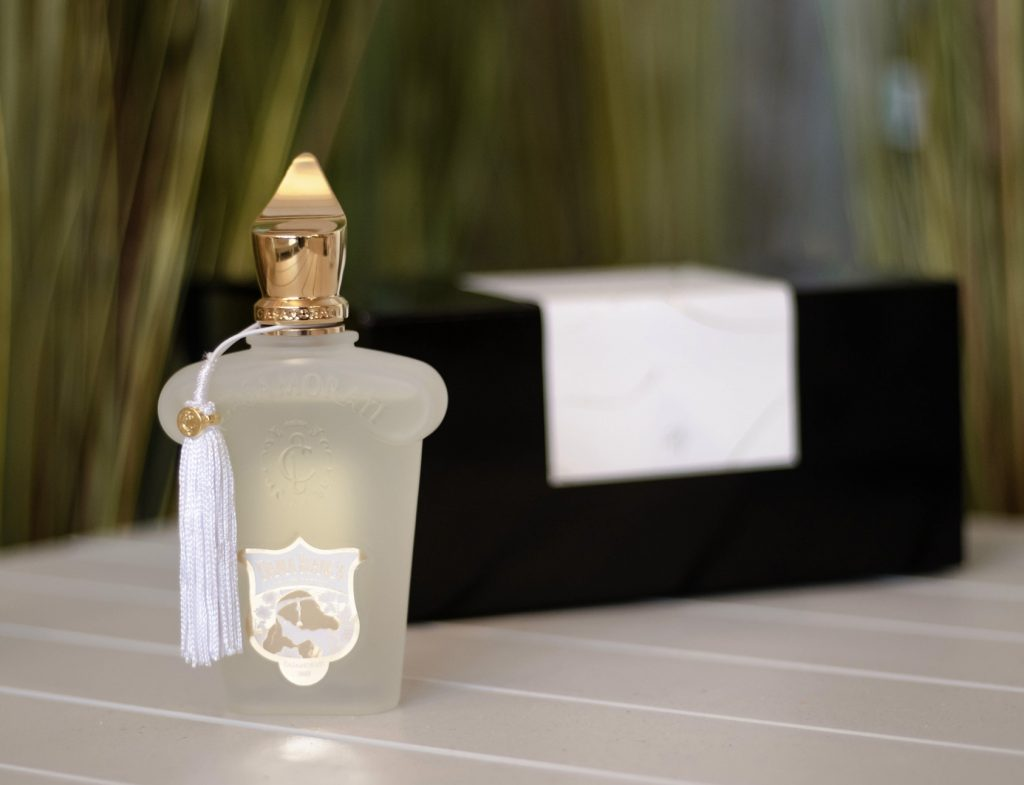 tipos de fragancias perfumes niche
